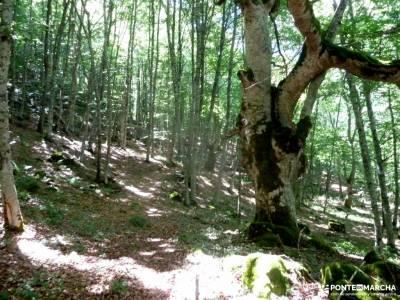 Sedano,Loras-Cañones Ebro,Rudrón;nacimiento del rio cuervo cuenca mapas de rutas municipios de seg